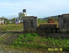 Terreno-Figueira